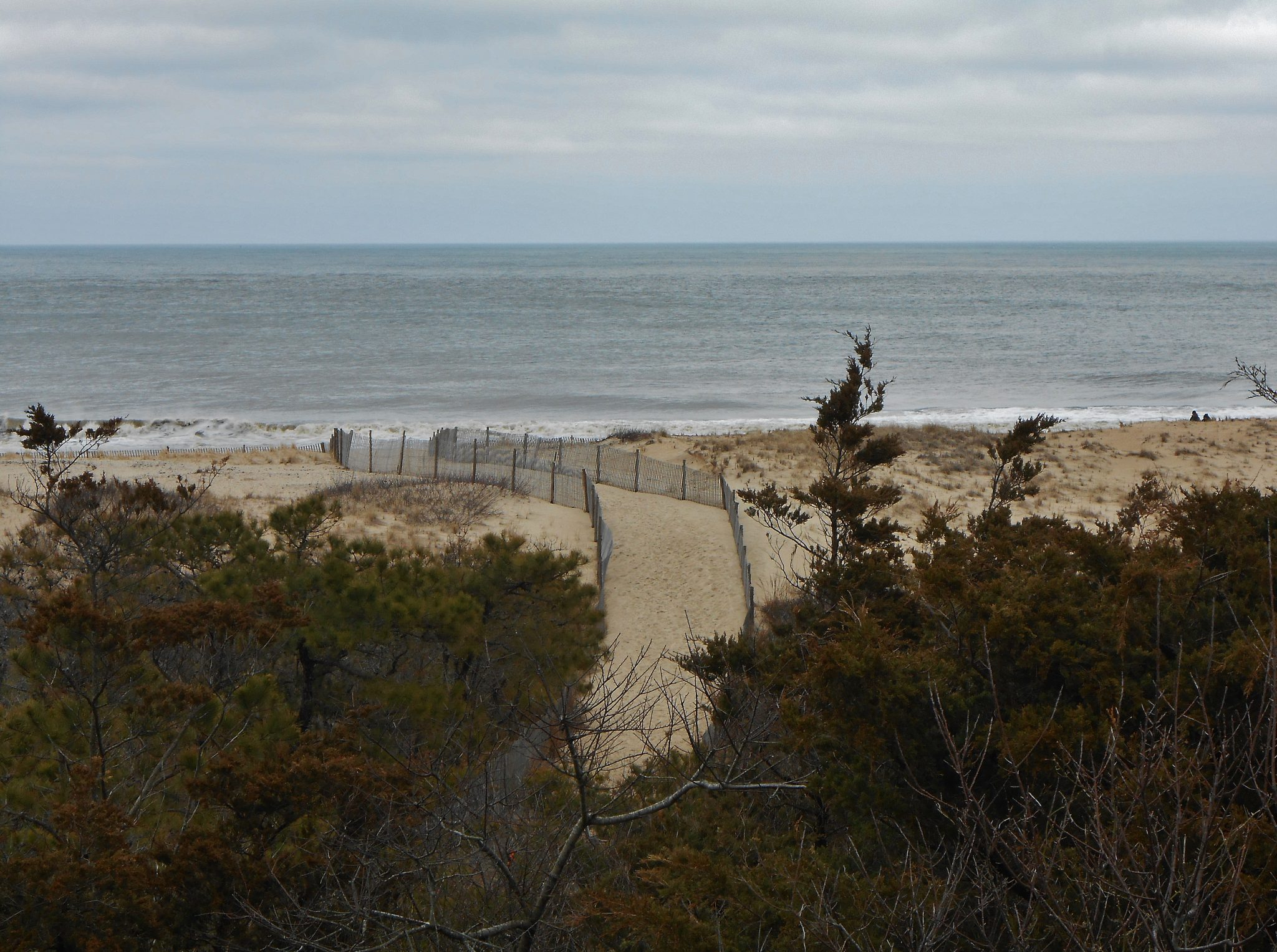Atlantic shore sand dune