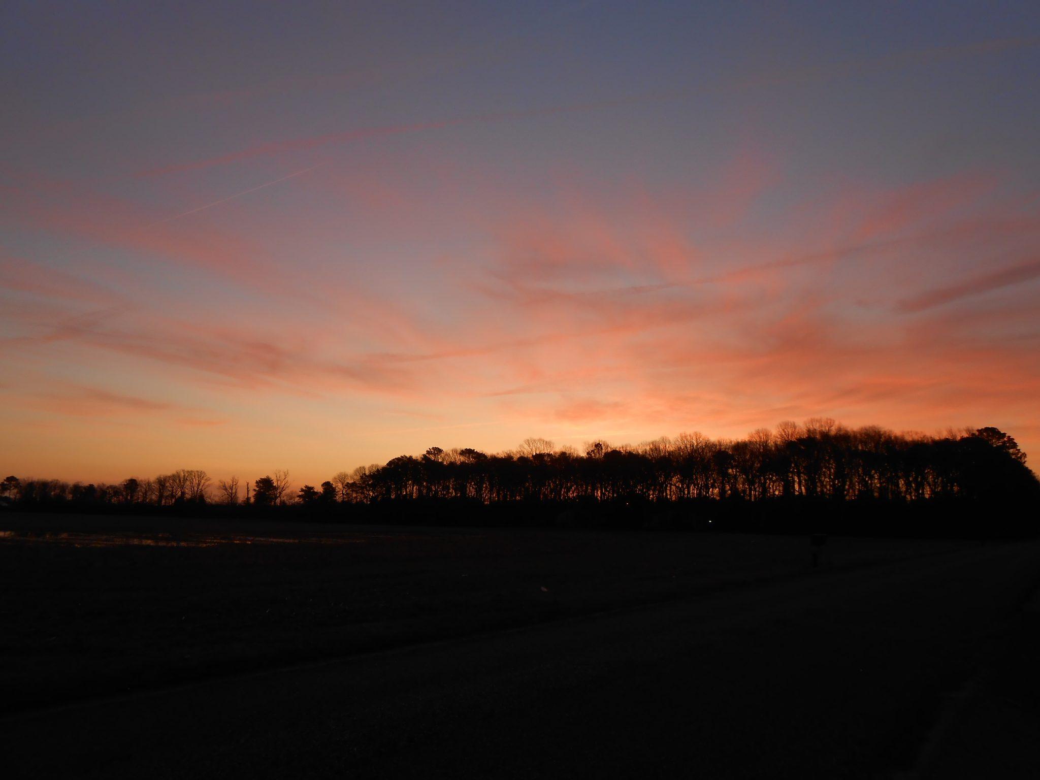 Delaware field sunrise